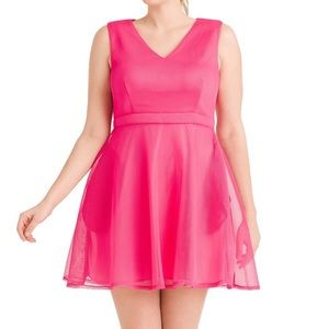 COPY - Mesh fit and flare dress NWOT